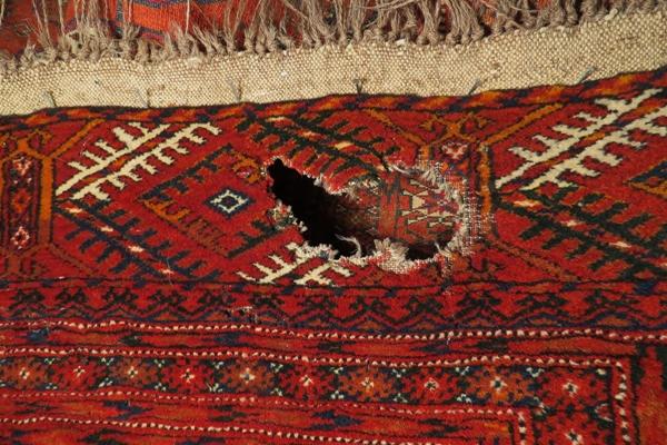 Dywan orientalny uszkodzony przez mole