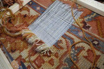 Renowacja runa dywanu